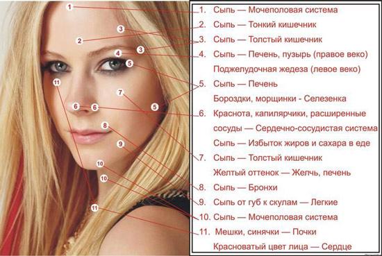 О проблемах с каким органом указывает появившаяся сыпь